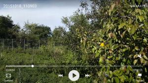 41.Poza Note5 filmare video specificatii v1